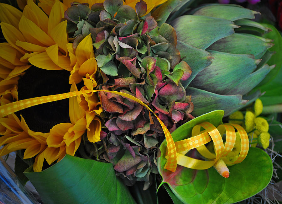 Sunflower Photograph - Sunflower And Thistle  by Mary Machare