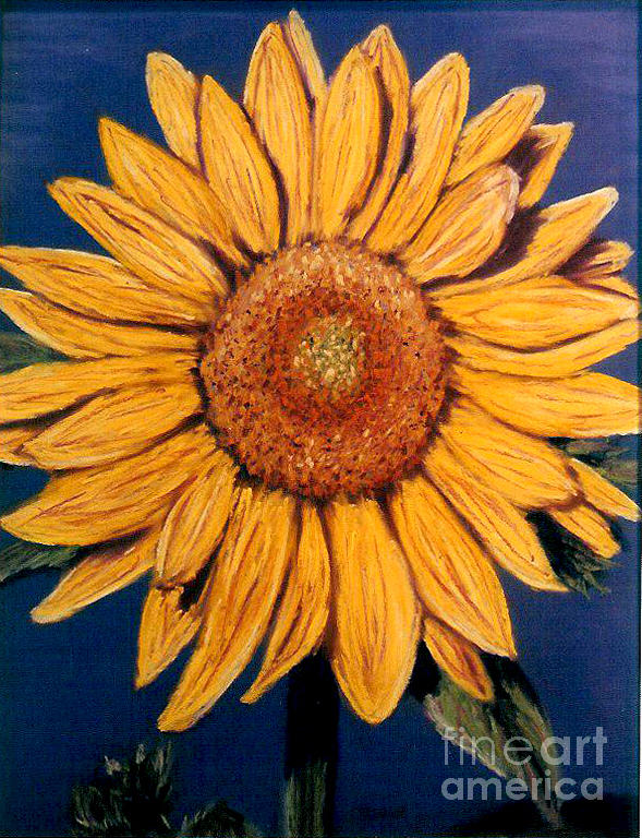 sunflower pastel by linda steider