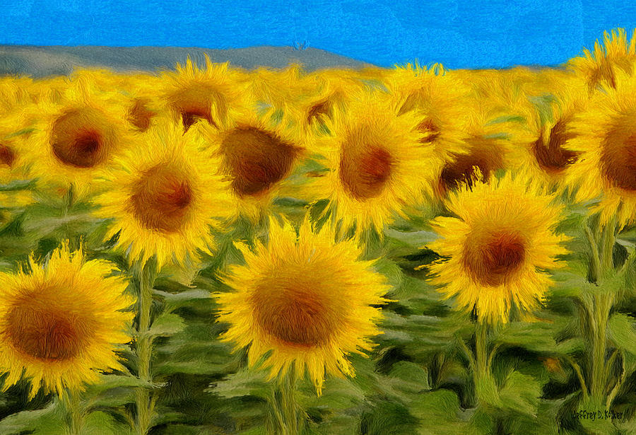 Sunflowers In The Field Painting