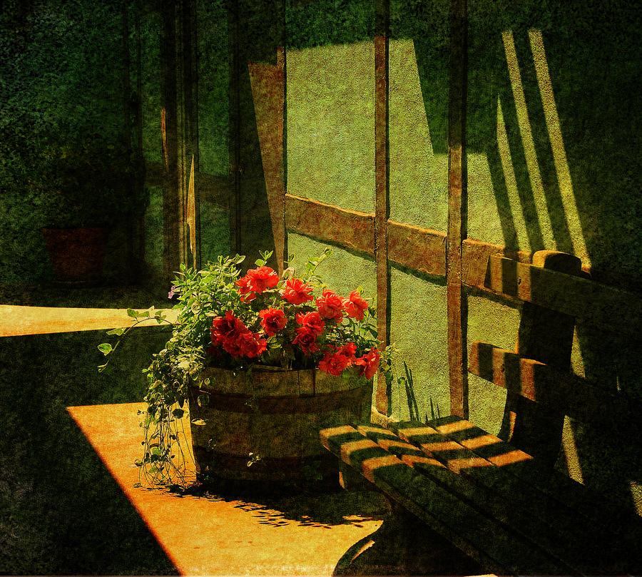 Sunny Corner Photograph