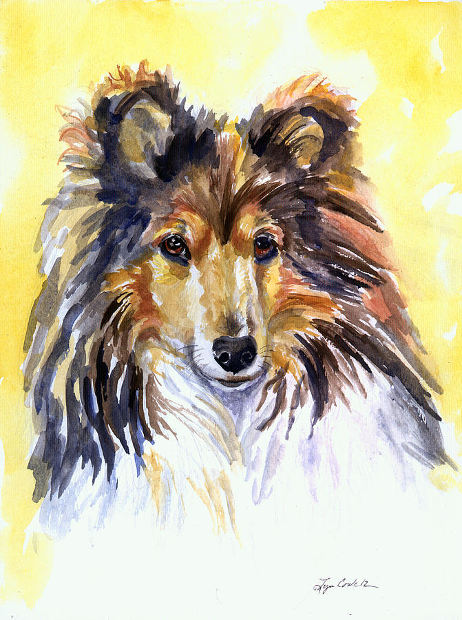 Shetland Sheepdog Painting - Sunny Sheltie by Lyn Cook