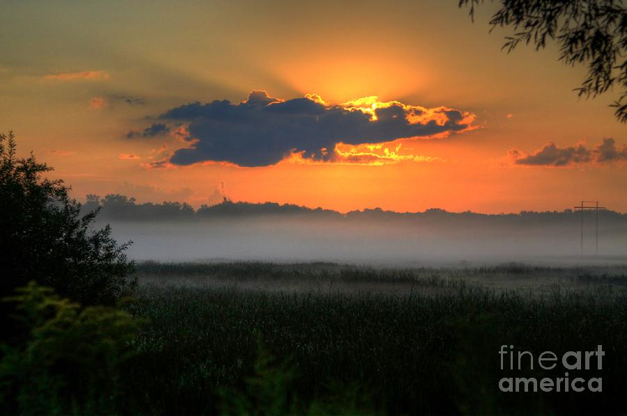 Sunrise In The Swamp-3 Photograph  - Sunrise In The Swamp-3 Fine Art Print