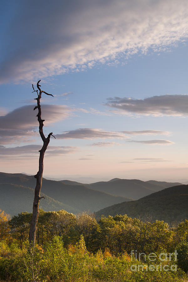 Sunrise Over Shenandoah National Park  Photograph