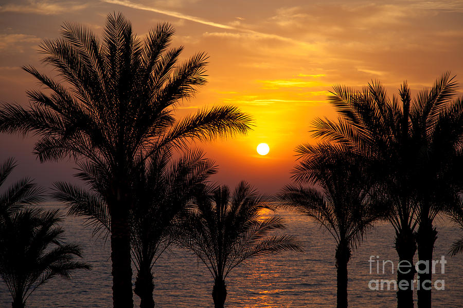 Sunrise Over The Red Sea Photograph
