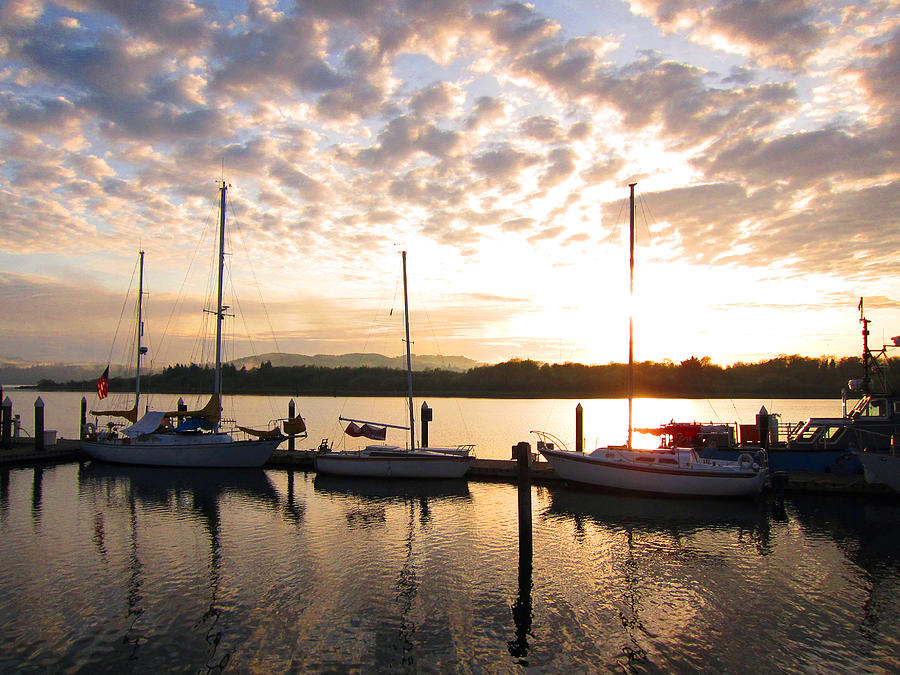 Sunrise Sailboats On Coos Bay Photograph  - Sunrise Sailboats On Coos Bay Fine Art Print
