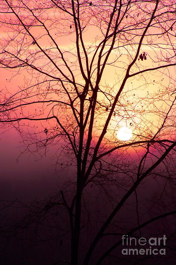 Sunrise Sunset Photograph