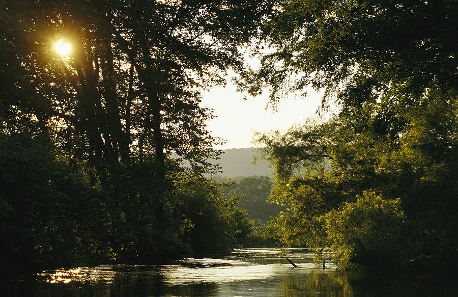 Sunset Above A Riparian Forest Photograph