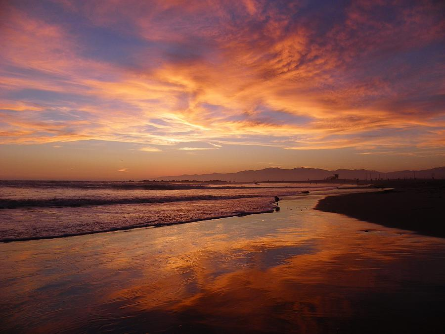 Sunset At Venice Beach By Henry Murray