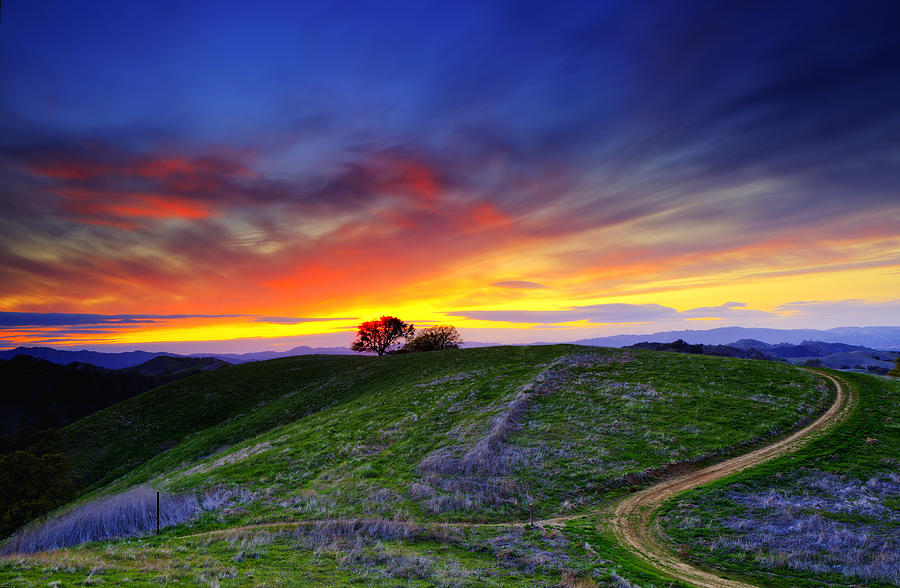 Sunset On Top Of Hillock Photograph