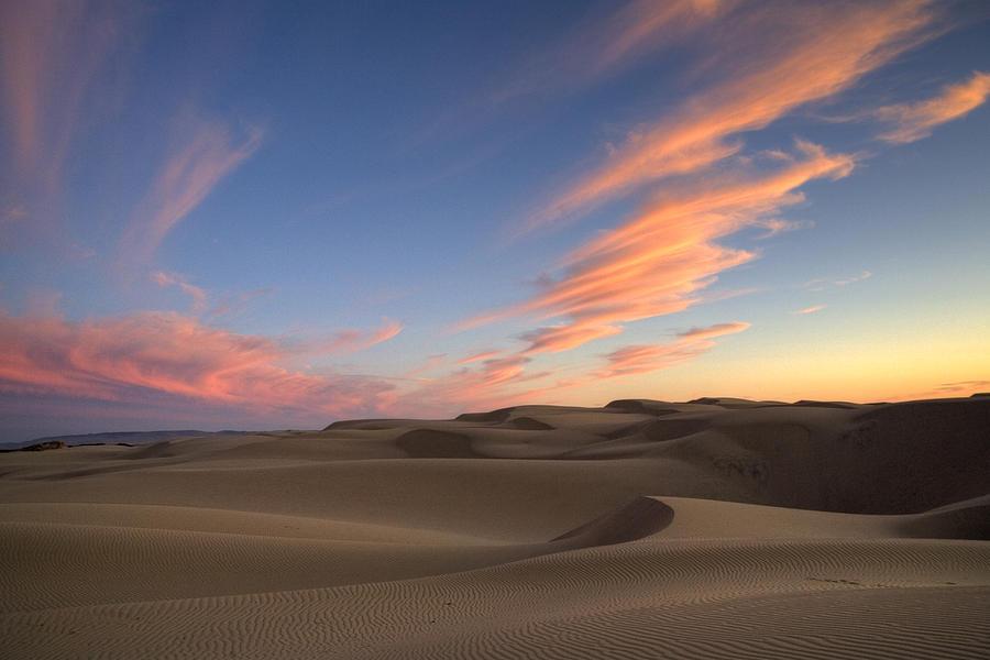 sunset over oceano dunes by cathy gregg