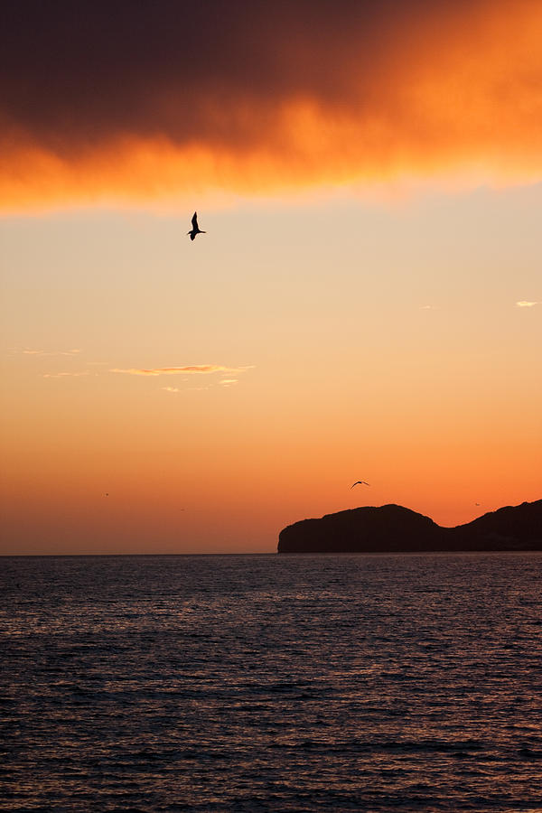 Sunset Over Sea Of Cortez Photograph  - Sunset Over Sea Of Cortez Fine Art Print