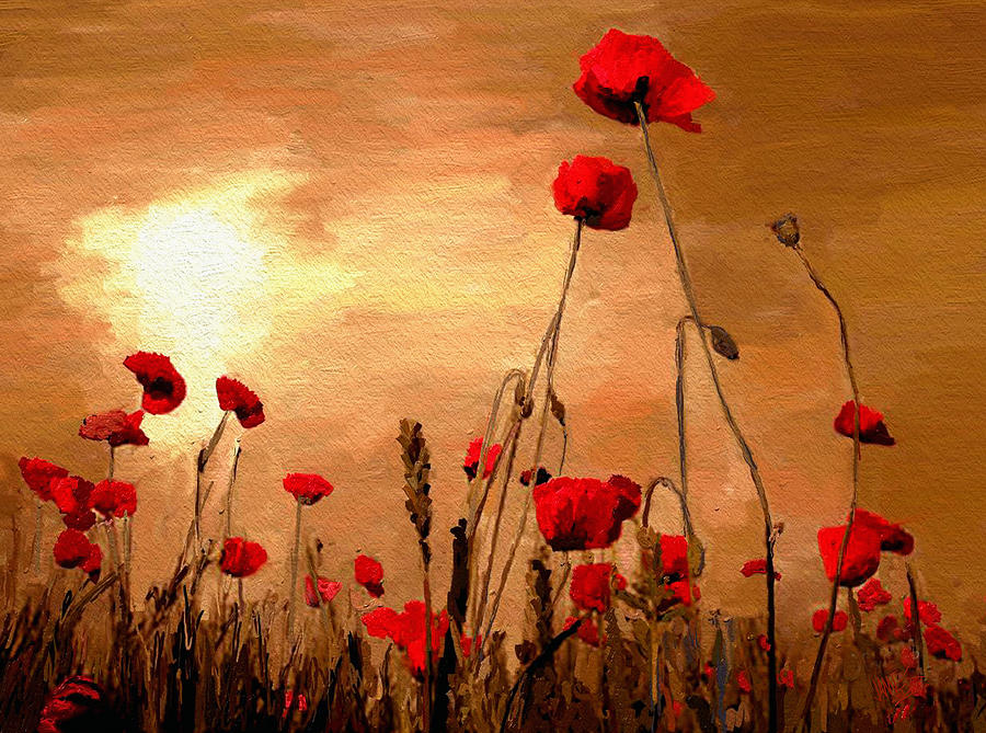 Sunset Poppies Painting  - Sunset Poppies Fine Art Print