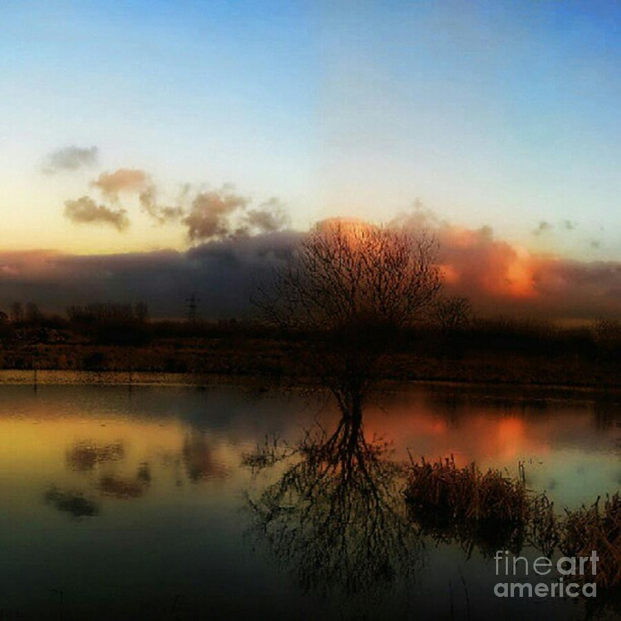 1stangel Photograph - Sunset Reflections by Isabella F Abbie Shores FRSA