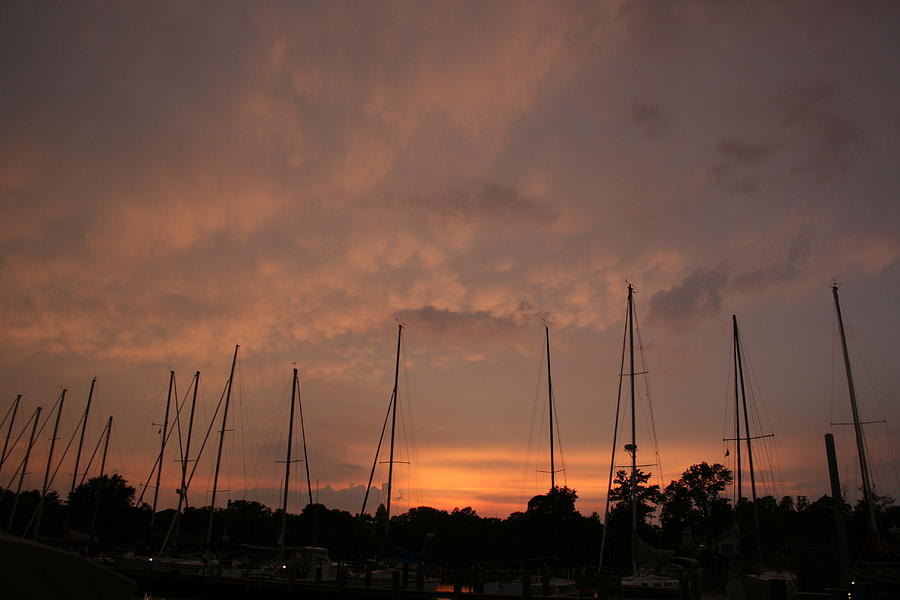Sunset Sky Annapolis Photograph  - Sunset Sky Annapolis Fine Art Print
