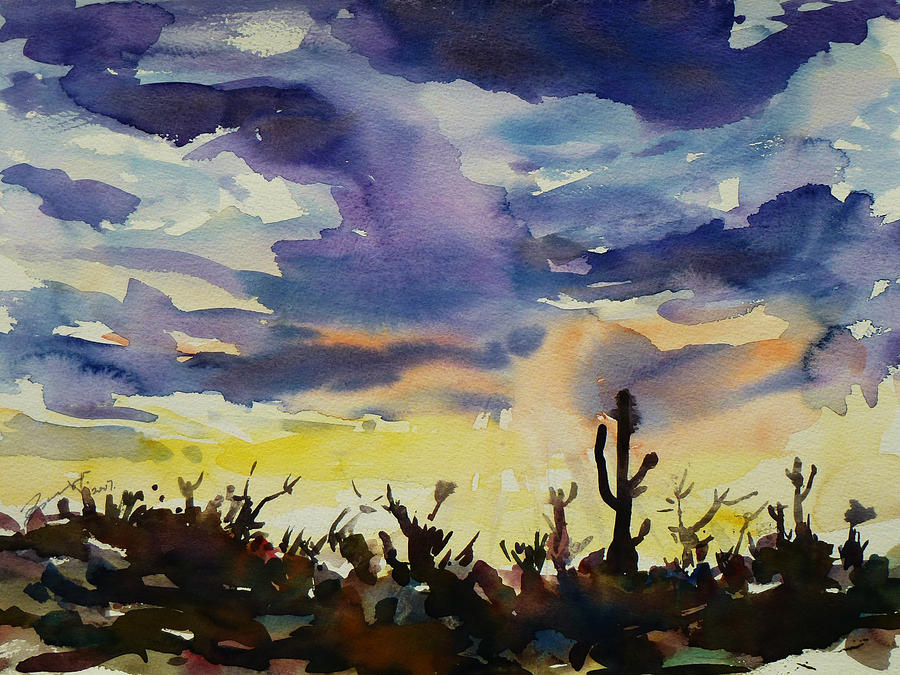 Sunset Sonora Painting