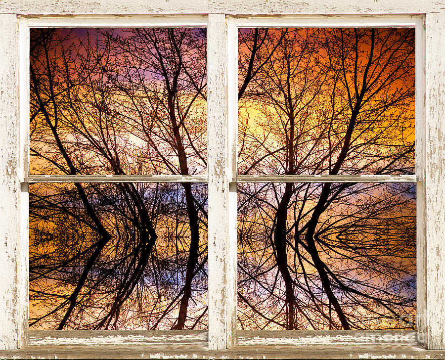 Sunset Tree Silhouette Colorful Abstract Picture Window View Photograph