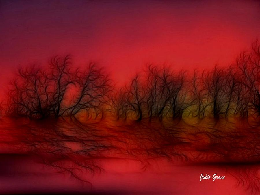 Sunset Trees Photograph  - Sunset Trees Fine Art Print