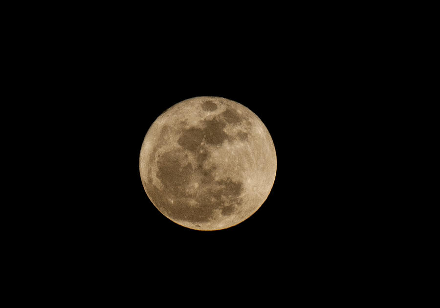 Super Moon 2011 Photograph