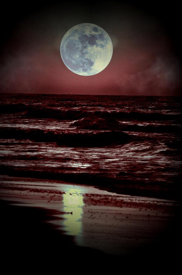 Supermoon Over The Ocean Photograph