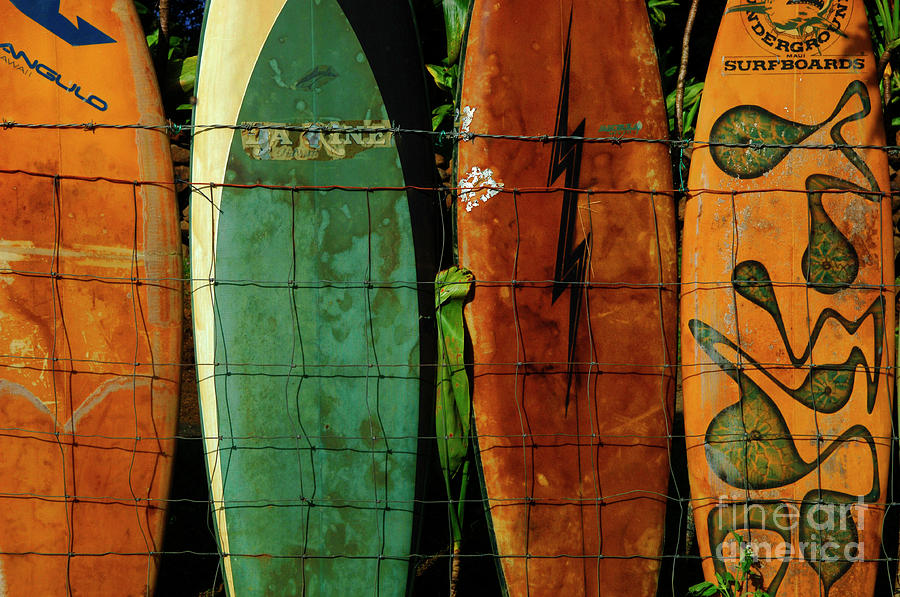 Surfboard Fence 1 is a photograph by Bob Christopher which was ...