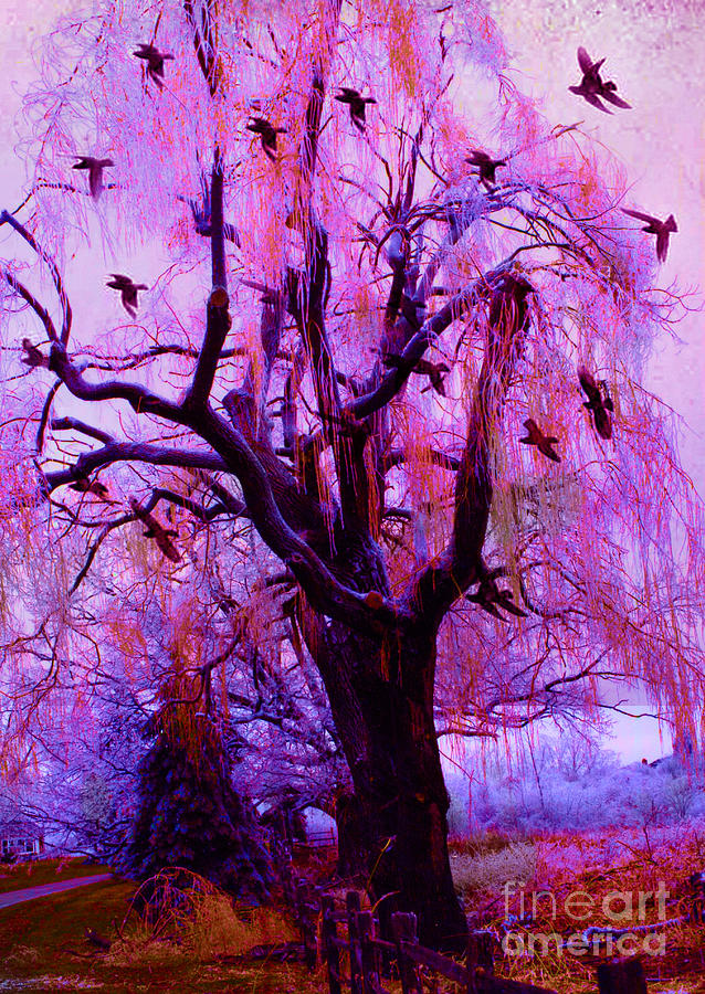 Surreal Fantasy Gothic Nature With Ravens Photograph  - Surreal Fantasy Gothic Nature With Ravens Fine Art Print