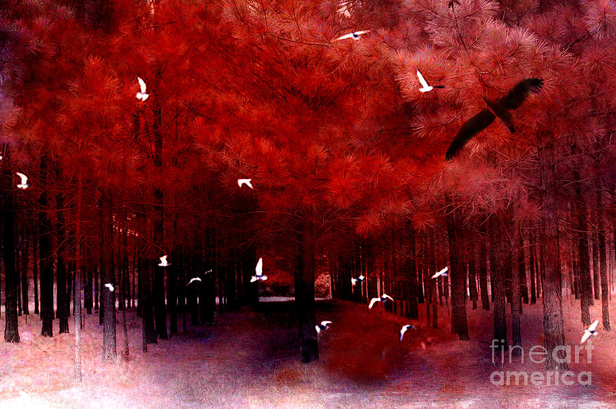 Surreal Fantasy Red Woodlands With Birds Seagull Photograph  - Surreal Fantasy Red Woodlands With Birds Seagull Fine Art Print