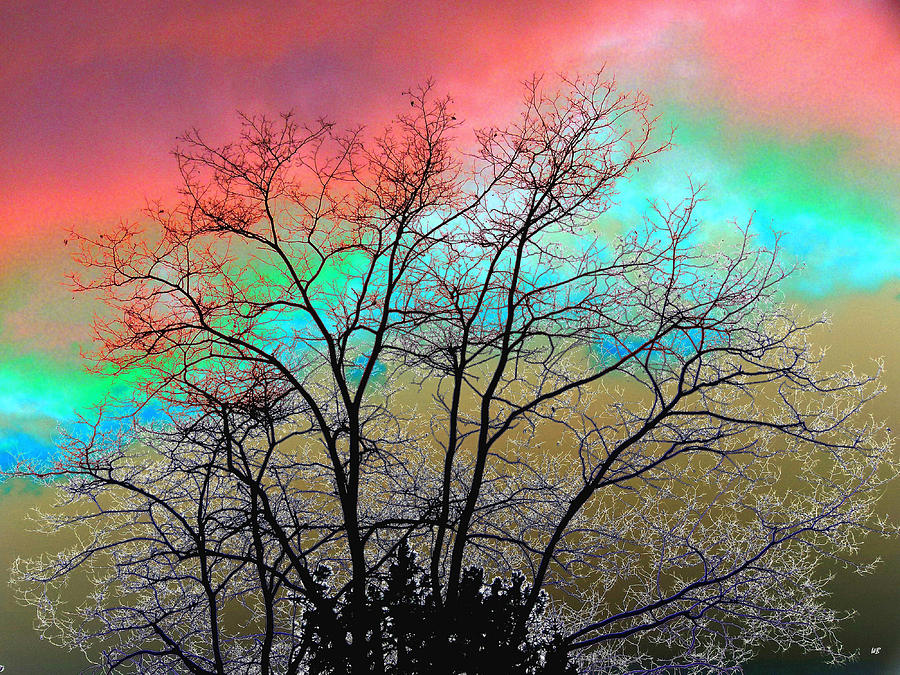 Surreal Winter Sky Digital Art  - Surreal Winter Sky Fine Art Print