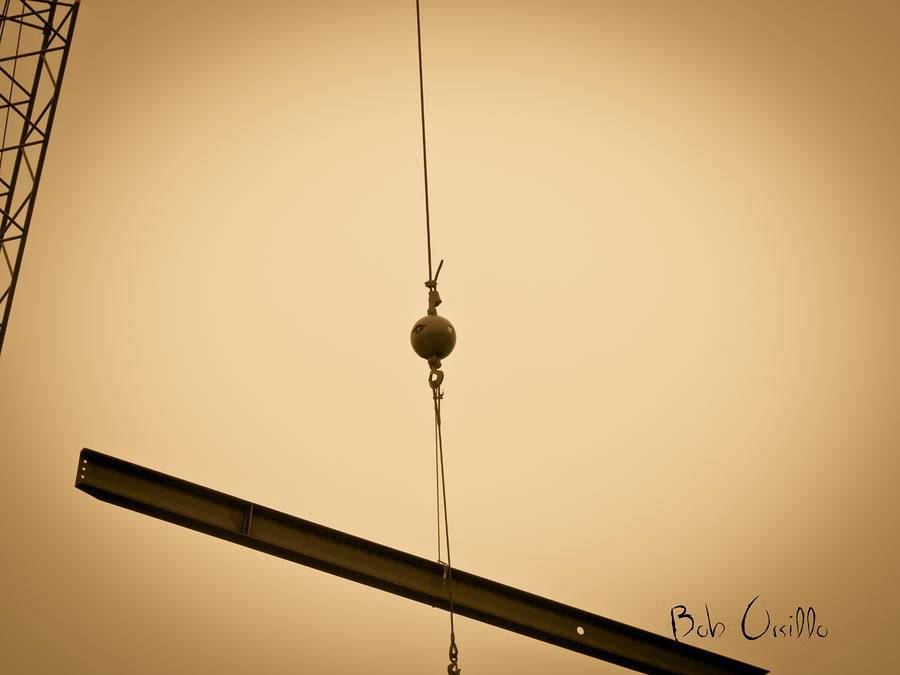 Suspended Photograph  - Suspended Fine Art Print