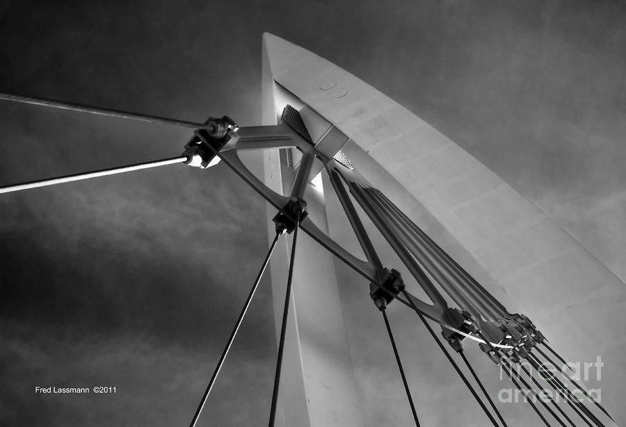 Suspension Photograph  - Suspension Fine Art Print