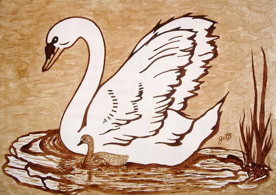 Swan With Chick Original Coffee Painting Painting