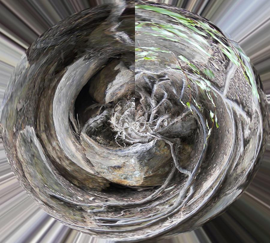 Rocks Digital Art - Swirls From The Earth by Carol McLagan