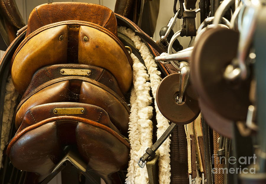 Tac Room Saddles Photograph  - Tac Room Saddles Fine Art Print