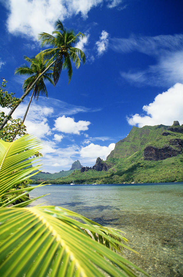 Tahiti, Moorea Photograph