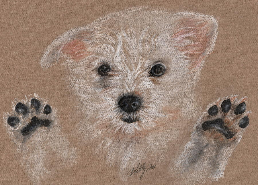 Dog Drawing - Take Me Home by Kathleen Kelly Thompson