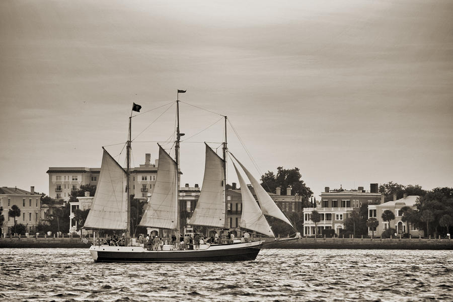 Tall Ship Schooner Pride Off The Historic Charleston Battery Photograph  - Tall Ship Schooner Pride Off The Historic Charleston Battery Fine Art Print