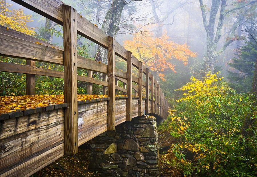 Tanawha Trail Foot Bridge - Rough Ridge Autumn Foliage Nc Photograph