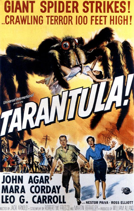 1950s Poster Art Photograph - Tarantula, John Agar, Mara Corday, 1955 by Everett