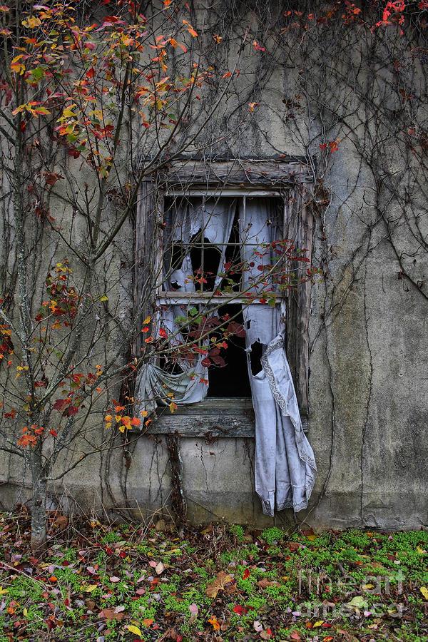 Tattered Curtain 09 Fall No.1 Photograph