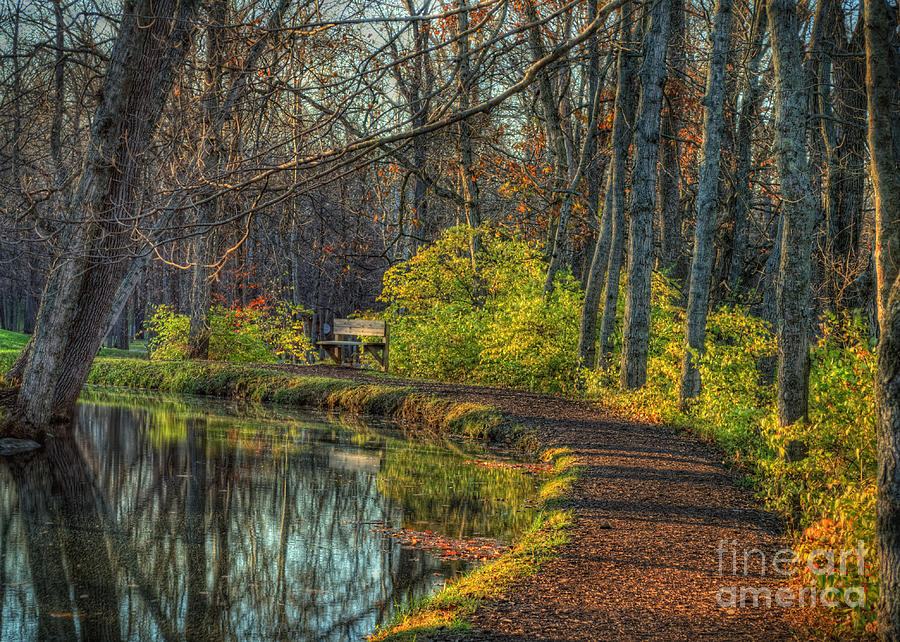 Tawawa Trail Photograph  - Tawawa Trail Fine Art Print