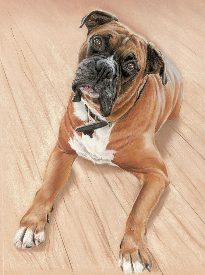 Taz My Best Friend Pastel  - Taz My Best Friend Fine Art Print