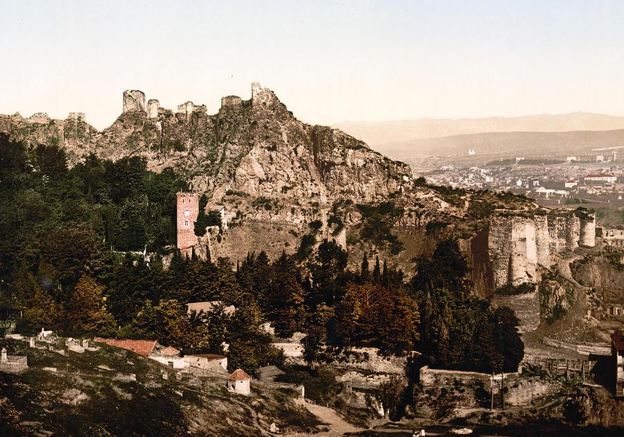 Tbilisi  Georgia - Botanical Gardens Photograph