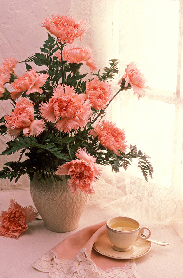 Tea Cup With Pink Carnations Photograph