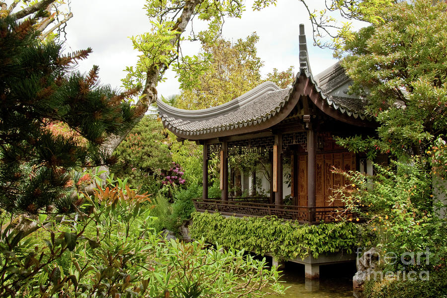 Teahouse In Lan Su Chinese Garden Portland Oregon Photograph By Sherry Curry