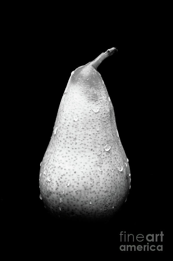 Tears Of A Sad Pear In Silver Photograph