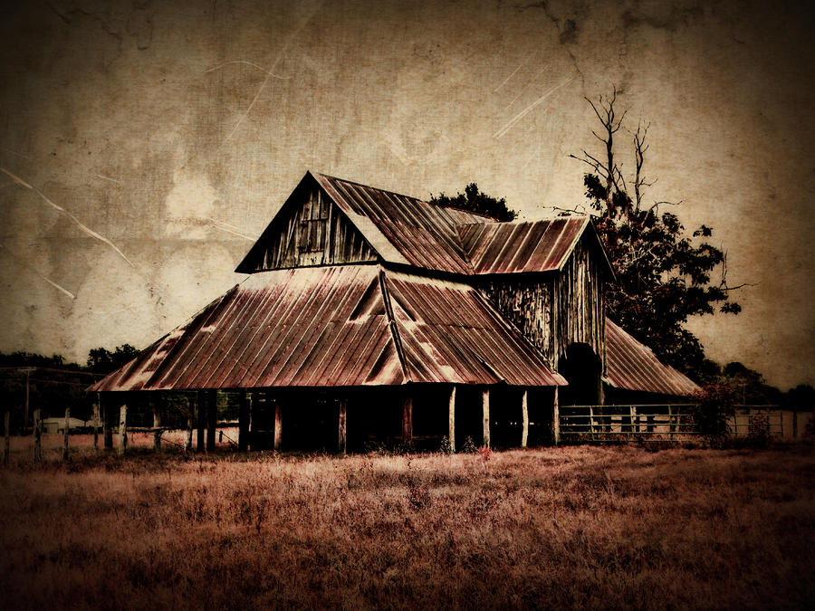 Teaselville Texas Barns Photograph