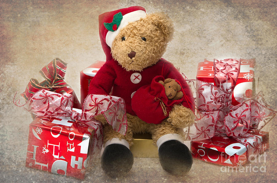 Teddy At Christmas Photograph  - Teddy At Christmas Fine Art Print