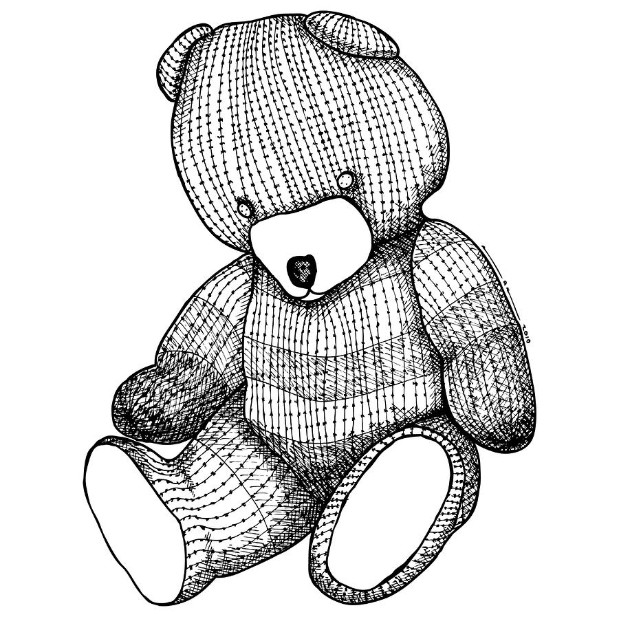 Teddy Bear Drawing  - Teddy Bear Fine Art Print