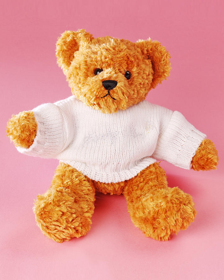 Vertical Photograph - Teddy Bear by Terry Mccormick