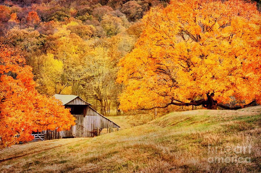 Tennessee Autumn Barn Photograph