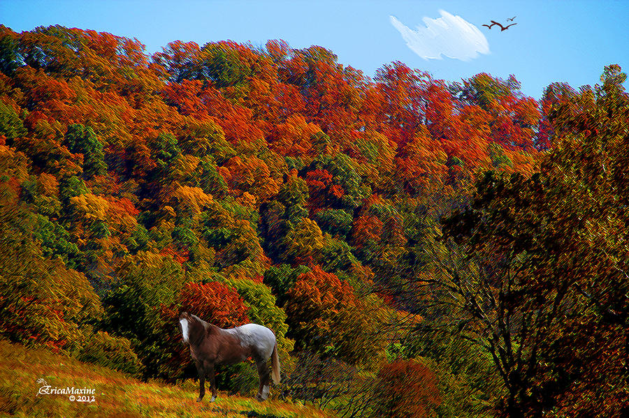 Tennessee Fall Photograph By Ericamaxine Price